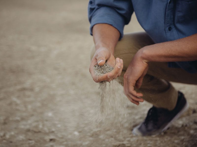 Person holding sand