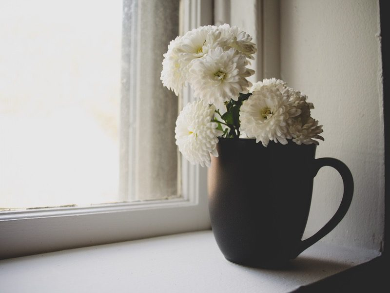 cup filled with flowers next to window
