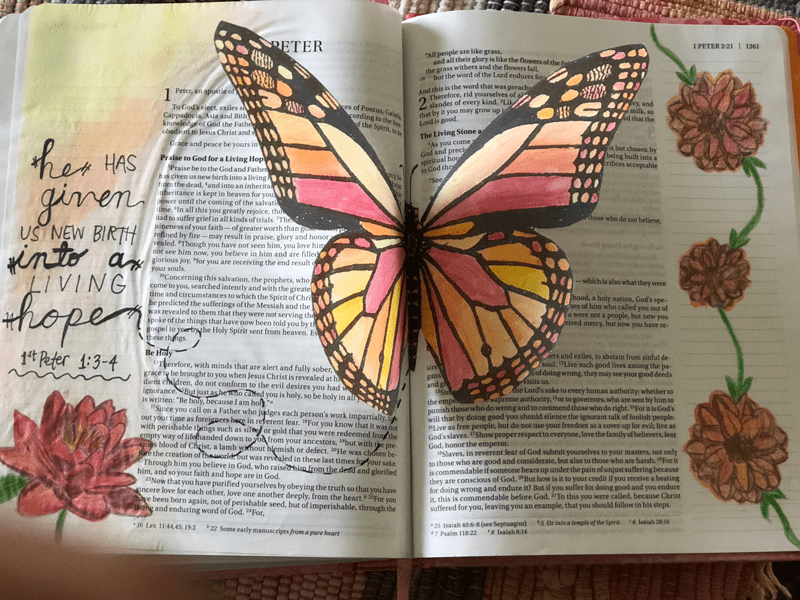 Bible journaling with butterfly, flowers, and text