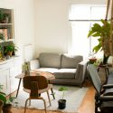 couch with table and plants inside room
